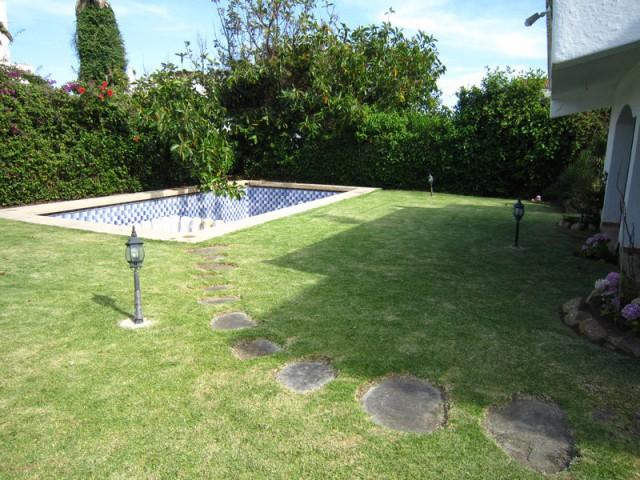 piscine entourée d'un jardin