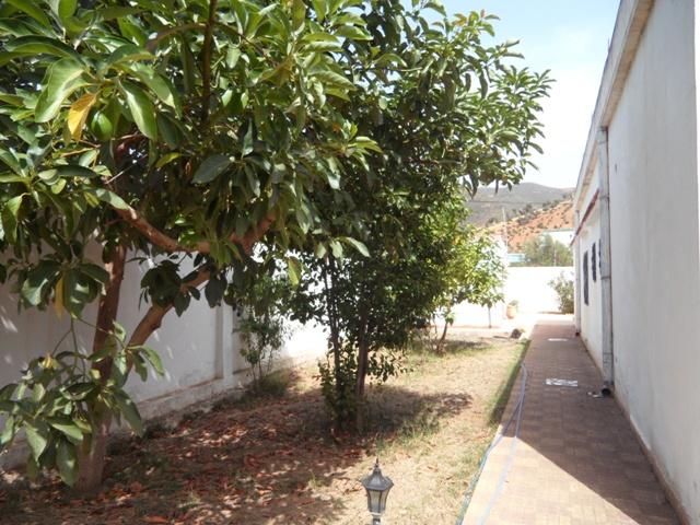Jardin villa à vendre amsa